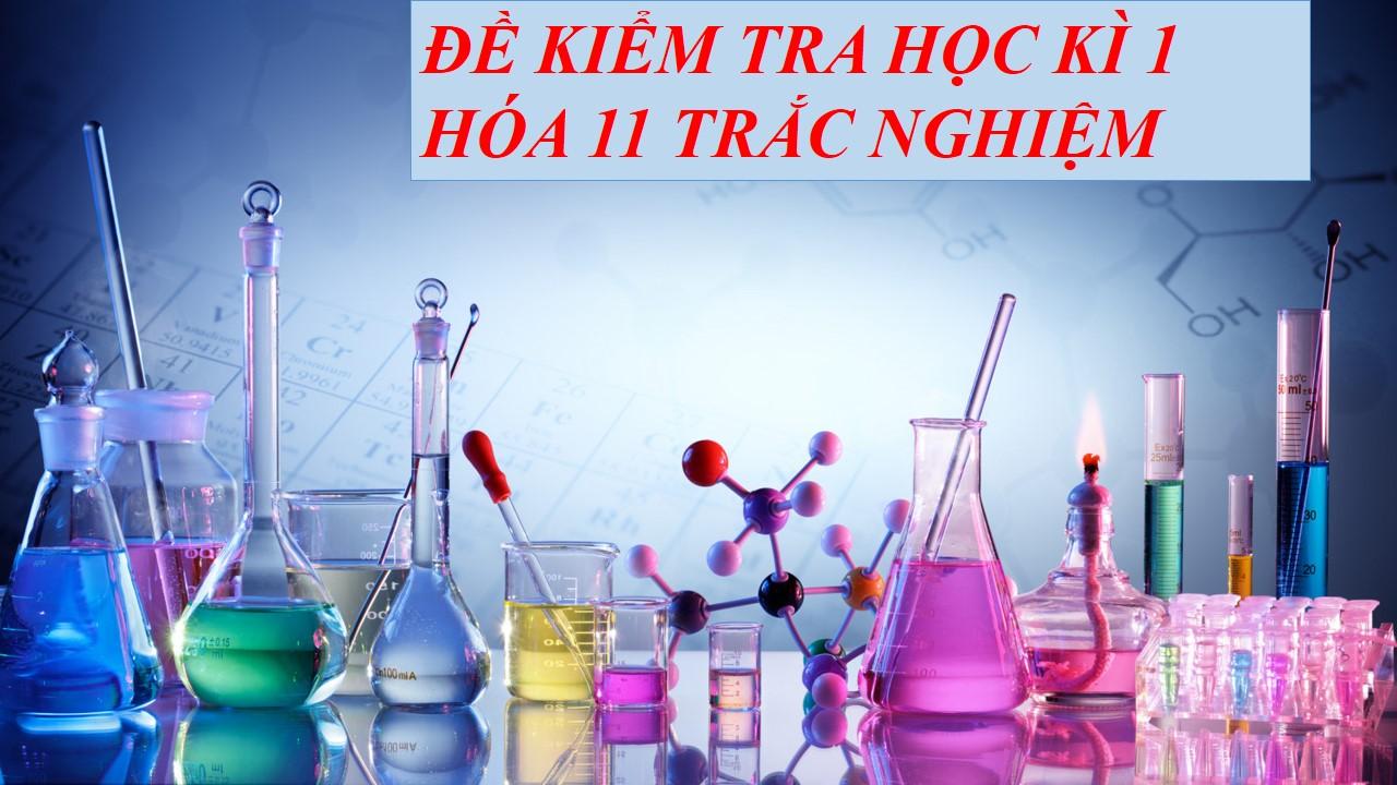 de-kiem-tra-hoc-ki-1-11-trac-nghiem-1